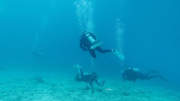 Photographie sous-marine, silhouettes de plongeurs en mer bleue