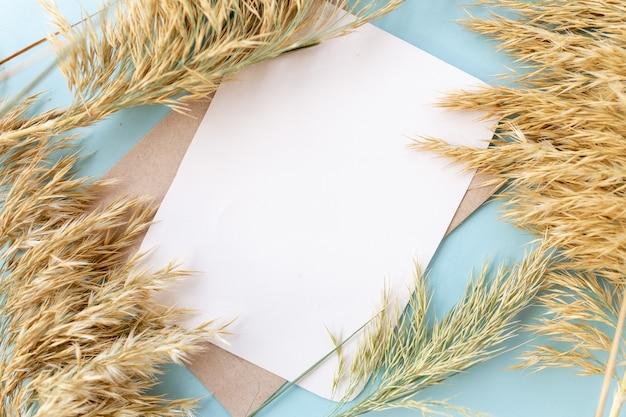 Photographie de style minimal. fleurs sèches, fond de vue de dessus de composition créative naturelle avec espace de copie pour votre texte. fond bleu clair. mise à plat.