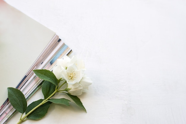 Photos imprimées, cartes cadres, sur fond bleu avec une fleur blanche. maquette.
