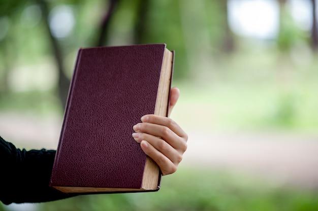 Photos et livres de la main concept d'éducation