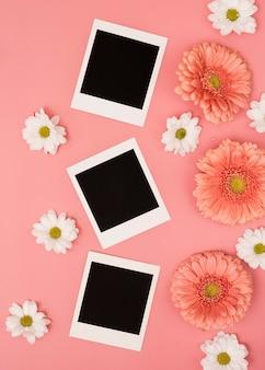 Photos polaroid avec marguerites et fleurs de gerbera