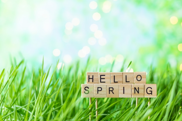 Phrase hello spring sur le fond d'herbe verte d'été avec la rosée
