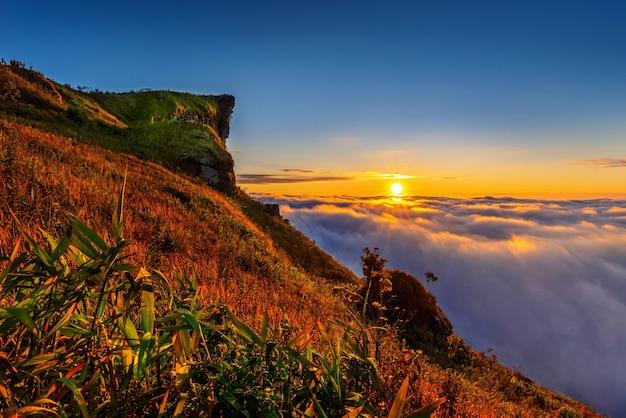 Phu chi fa et brouillard au lever du soleil dans la province de chiang rai, thaïlande