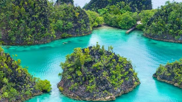Pianemo island, blue lagoon, raja ampat, papouasie occidentale, indonésie