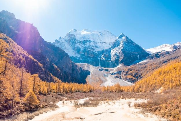 Pic de neige belle vue avec l'automne laisse dans la réserve naturelle de yading, sichuan, chine.