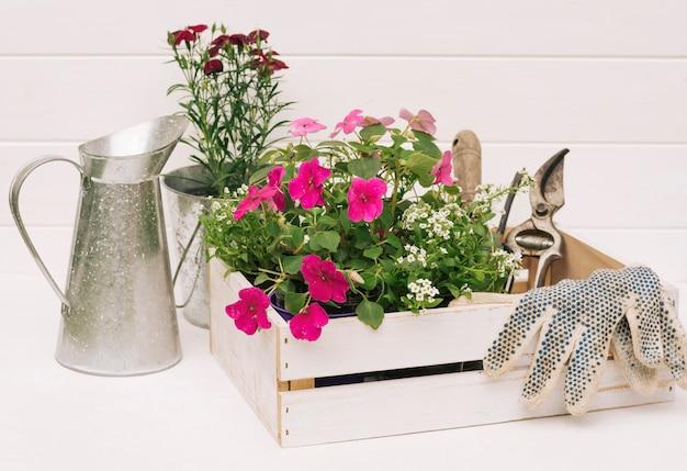 Pichet métallique près des fleurs et du matériel de jardinage dans une boîte près du mur