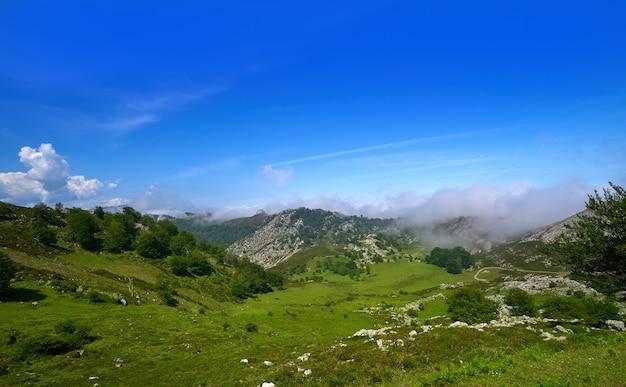 Picos de europa dans les asturies d'espagne