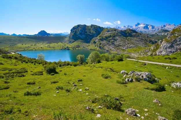 Picos de europa enol lake in asturias espagne