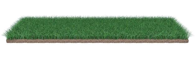 Pièce d'herbe avec de la terre