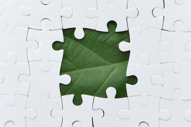 Pièce de puzzle nature