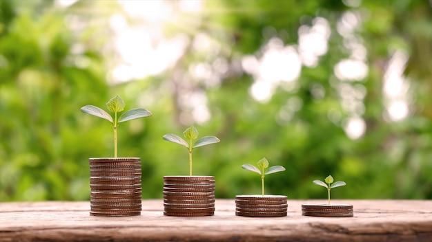 Des pièces de monnaie et des arbres sont plantés sur des tas de pièces de monnaie pour la finance et la banque. concept de tendance à la baisse pour l'investissement, les fonds communs de placement, la finance et les affaires