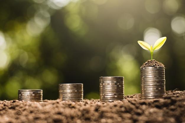 Les pièces de monnaie sont empilées sur le sol et les semis poussent par-dessus.
