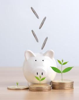 Les pièces tombent dans la tirelire cochon blanc concept financier et de dépôt d'argent