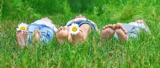 Pieds d'enfants à la camomille sur l'herbe verte.