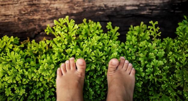 Pieds d'enfants debout sur l'herbe verte naturelle. vue de dessus