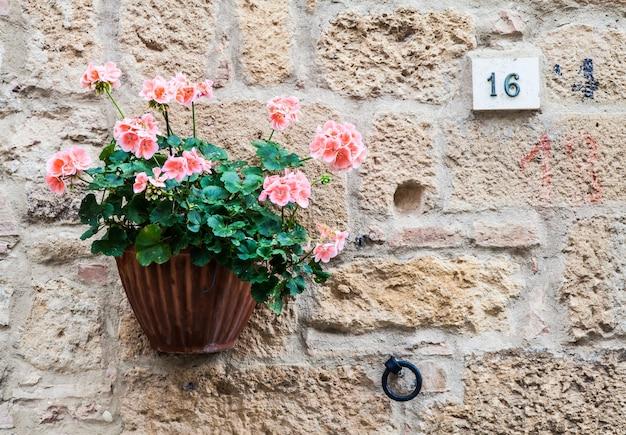 Pienza, région toscane, italie. vieux mur avec des fleurs
