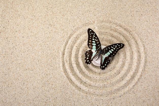 Pierre de méditation de jardin zen pour concentration et détente avec papillon. vue de dessus