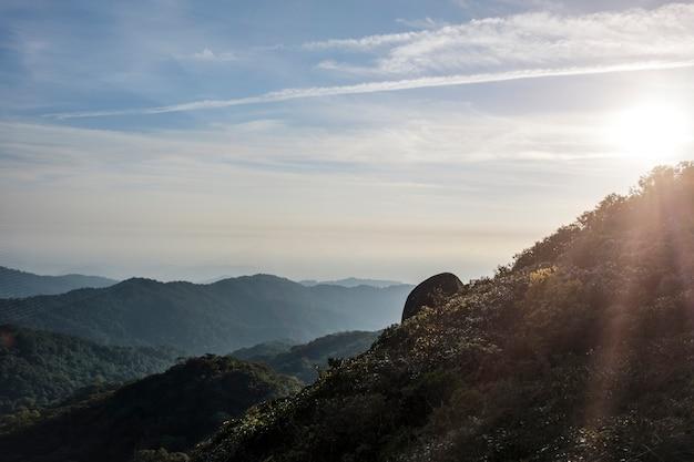 La pierre qui est unique à cet endroit de montagne panoramique et l'abondance de bois dans la forêt
