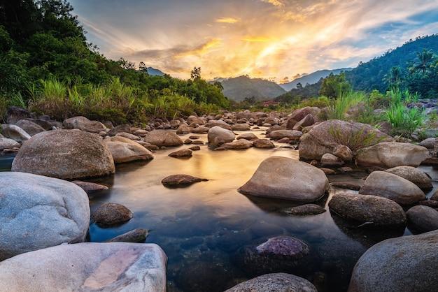 Pierre de rivière et arbre avec ciel et nuage coloré. voir l'eau, l'arbre de la rivière, la rivière de pierre et la feuille d'arbre dans la forêt