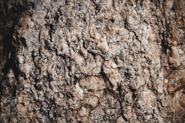 Pierre texturé gros plan avec la roche minuscule de paillettes sur la surface.