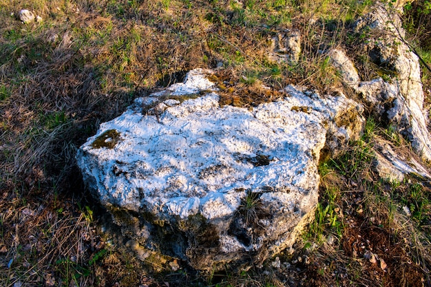 Pierre de texture de roche