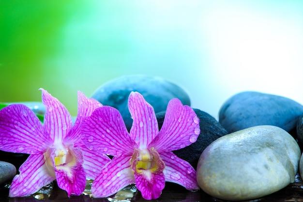 Pierre zen et orchidée rose sur la table en bois avec espace pour texte ou produit