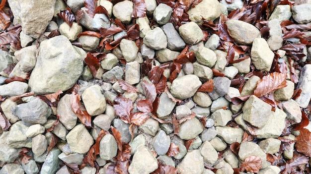 Pierres arrondies grises avec gros plan de feuilles tombées. gros plan pierres colorées au sol avec des feuilles sèches et de la laine. pierre à motifs. pierre naturelle au sol.