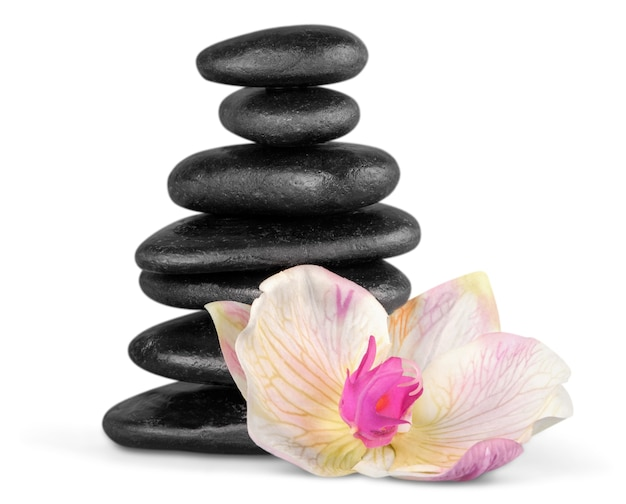 Pierres de basalte zen et fleur sur fond