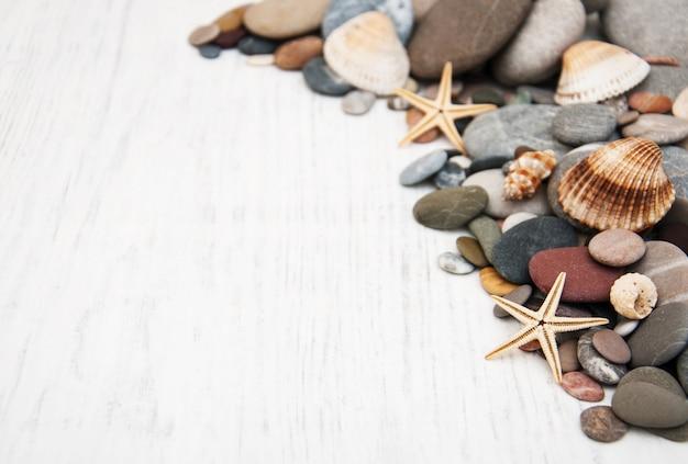 Pierres grises, coquillages et étoiles de mer
