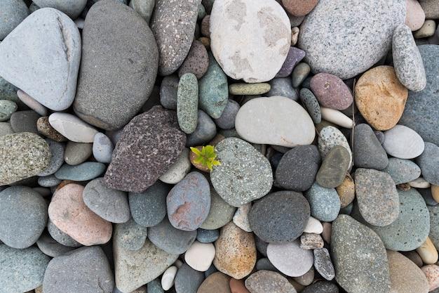 Pierres grises de la mer fond de pierres grises humides de la mer pour la conception. photo de haute qualité