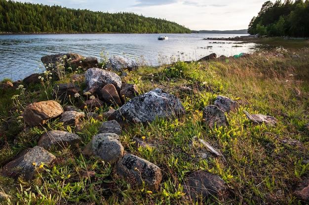 Pierres et herbe au bord de la mer blanche