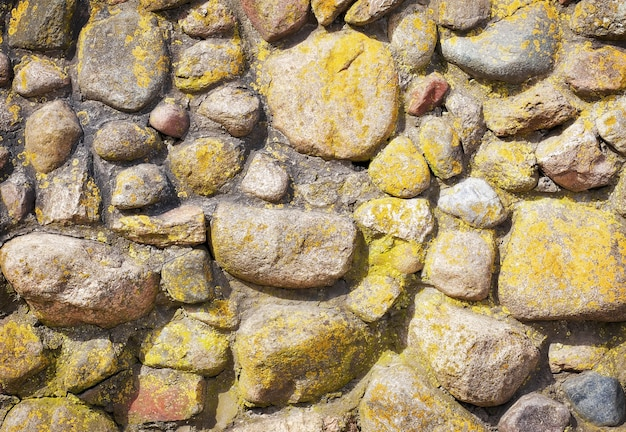 Les pierres rondes au mur de ciment. texture de mur de pierre avec de la mousse