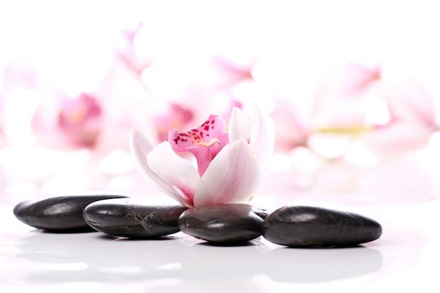 Pierres de spa et belle orchidée