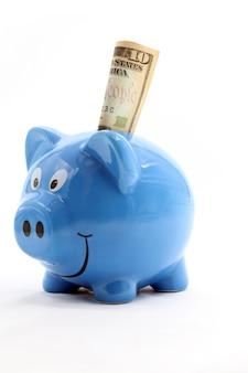 Piggy saving dollar