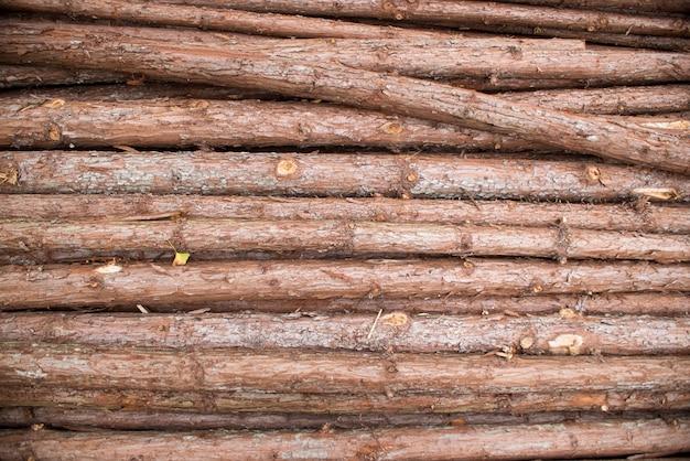 Pile de brindilles de bois