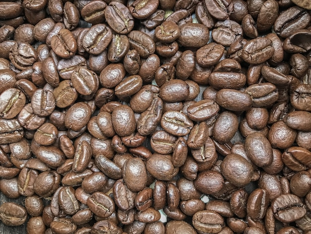 Pile de grains de café frais rôtis.
