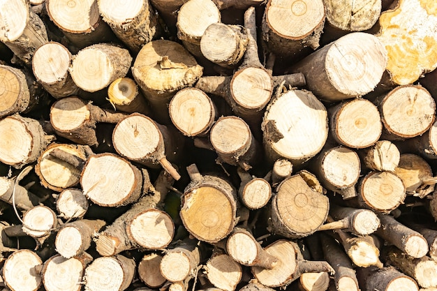 Pile de grumes sciées. fond de décor en bois naturel.