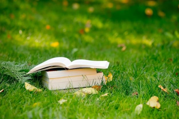 Pile de livres sur l'herbe verte à l'automne