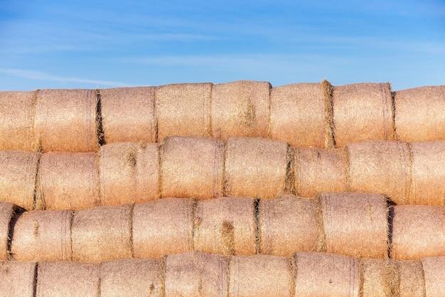 Pile de paille dans le champ - champ agricole sur lequel ont été laissés couchés des meules de paille