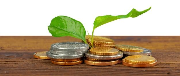 Pile de pièces d'argent et concept financier de plante en pleine croissance
