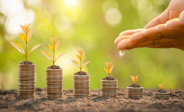 Pile de pièces avec de jeunes pousses vertes sur le dessus. succès de l'entreprise, concept de croissance financière ou financière