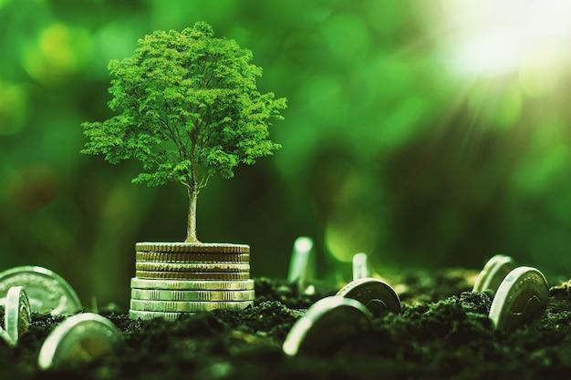Pile de pièces avec plante à croissance progressive et fond de soleil. concept économiser de l'argent