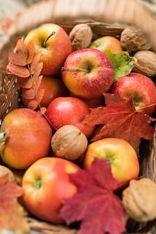 Pile de pommes mûres rouges et de noix dans le panier avec quelques feuilles d'érable et de rowan cueillies dans le jardin
