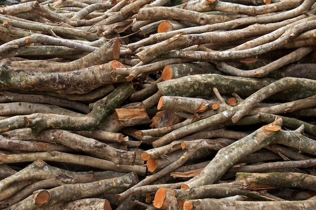 Pile de rondins de bois scié servant de bois de chauffage