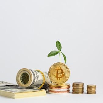 Des piles de bitcoins près de piles d'argent