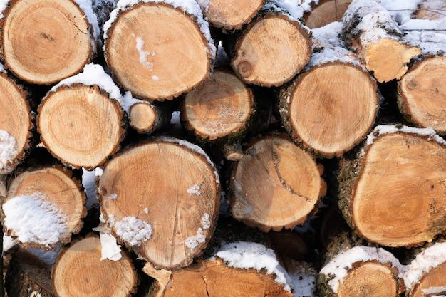 Des piles de bois de chauffage empilées. bois de chauffage sous la neige. troncs hachés. fond, texture