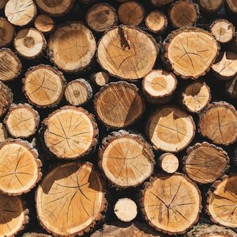 Piles de bois