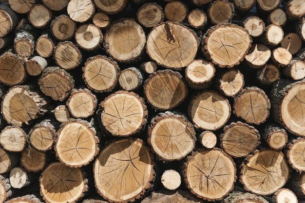 Des piles de bois