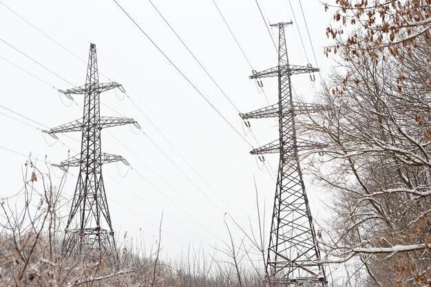 Pilier des fils électriques haute tension dans la forêt