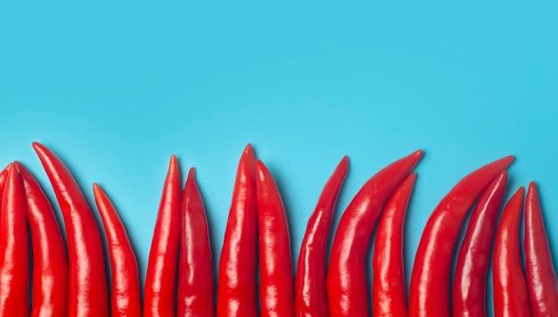 Piments sur un fond bleu coloré. les piments rouges comme ingrédient de la cuisine asiatique et mexicaine et des épices